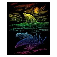 Engraving Art Rainbow - Dolphin Reef