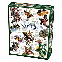 Moth Collection (1000 pc) Cobble Hill